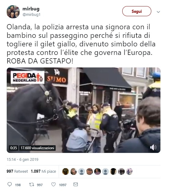 Gilet gialli, la vera storia della donna con il passeggino arrestata in Olanda foto 1