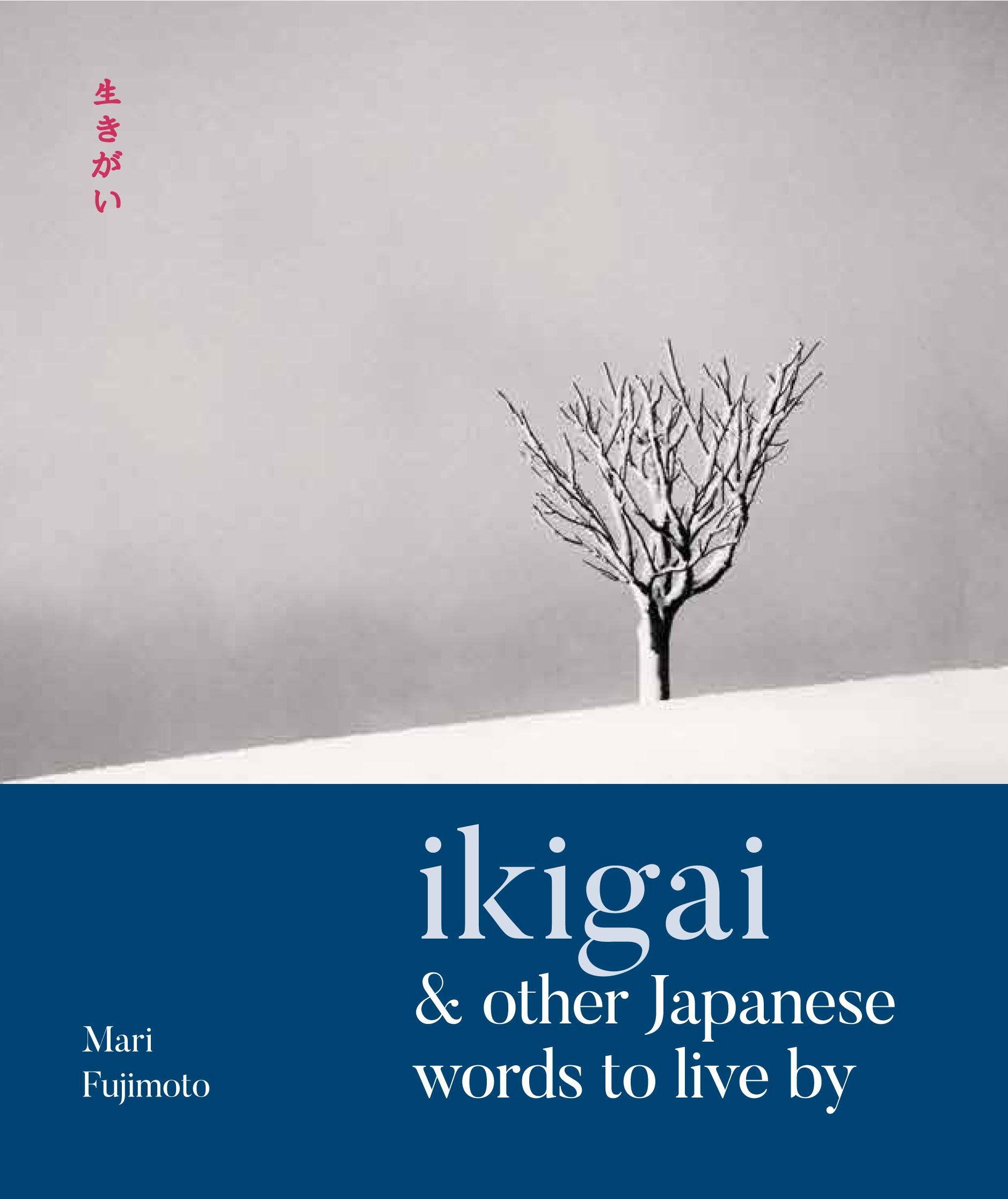 «Ikigai» e altre parole giapponesi per vivere meglio foto 9