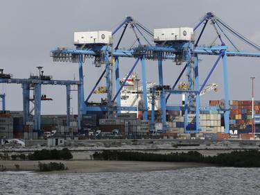 Italia-Kenya, la guerra della pasta che mette in crisi gli importatori italiani foto 1