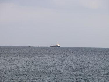 L'attacco di Palazzo Chigi: «Sea Watch voleva salvare i migranti o richiamare l'attenzione dei media?» foto 1