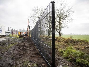 Ci sono muri e muri: confine anti-cinghiale tra Danimarca e Germania foto 1