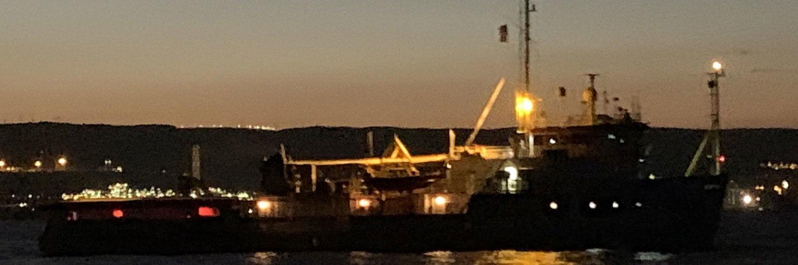 Tutte le tappe della vicenda Sea Watch foto 4