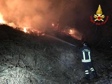 Varese, incendio sul monte Martica: 100 ettari di bosco in fiamme foto 3