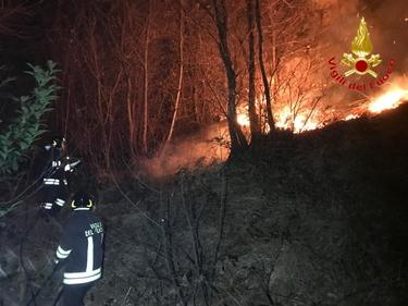 Varese, incendio sul monte Martica: 100 ettari di bosco in fiamme foto 1
