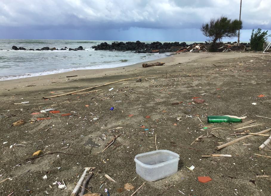 La spiaggia di Coccia di Morto, Fiumicino/Legambiente