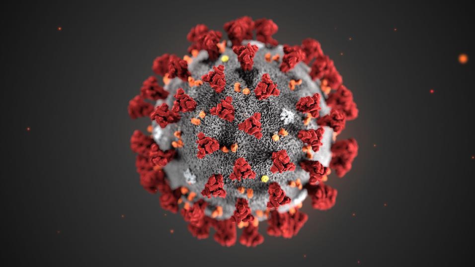 Coronavirus, una ragusana lo