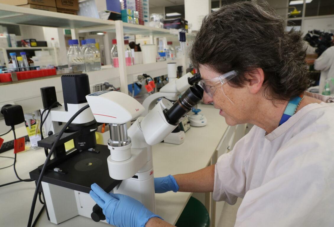 Vaccino Coronavirus, domani parte la sperimentazione sull'uomo