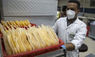 Un medico trasporta sacche di plasma donato dai pazienti guariti da Covid-19 a Vacsera, un'azienda farmaceutica egiziana, Il Cairo, Egitto, 6 luglio 2020. La cura del plasma è uno dei trattamenti che vengono usati sui pazienti ancora malati. EPA/Mohamed Hossam