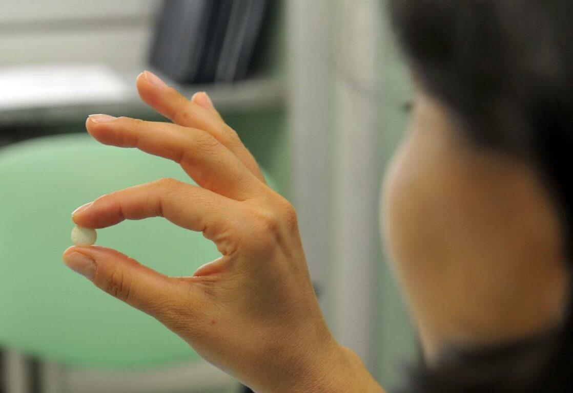Pillola abortiva senza ricovero, rivolta di Meloni e Pro Vita