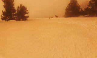 Neve Gialla 2